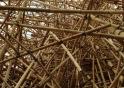 inside big bambu